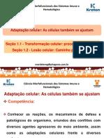 Adaptação celular.pdf