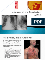 2420 Diseases of the Respiratory System 042810 Fv
