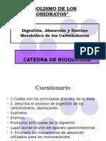 coferencia de digestion y absorcion de CHO.pptx