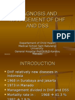 DHF-DSS