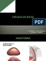 Cirugia de Bazo (1)