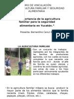 Importancia Importancia de la agricultura Familiar de La Agricultura Familiar y La Seguridad Alimentaria en Yucatán.