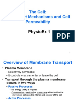 Membrane Transport (2)