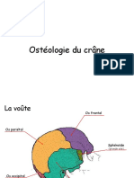 Osteologie Du Crâne
