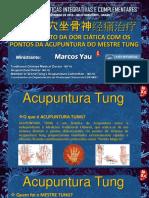 296490426-Acupuntura-Do-Mestre-Tung-Marcos-Yau-Simposio-Bh-12-2015.pdf