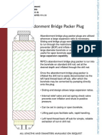 RIPE- Abandonment Bridge Packer Plug