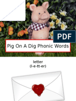 Pig on a Dig Phonic Words