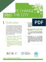 CCUF PolicyPerspectivesPaper VERSION GB