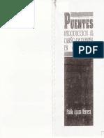 230754727 Pablo Apaza Herrera Puentes Introduccion Al Diseno de Puentes en Concreto
