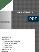 Muramidaza