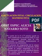 2.b. Circulacion Fetal-uuu