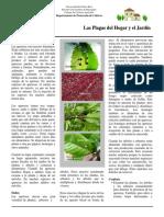 Queresas.pdf