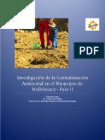 Investigación Ambiental Fase II