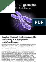 Minimal Genome v2