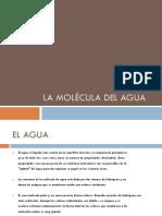 El Agua y Los Bioelementos (2)
