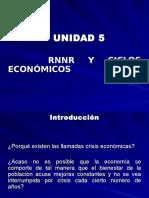 1730574018.TEMA 5 RNNR y Ciclos Económicos.ppt