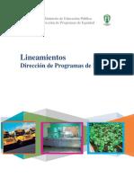 lineamientos2012.pdf