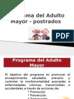 Programa Del Adulto Mayor - Postrados2015
