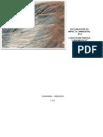 Declaración de Impacto Ambiental (Autoguardado)