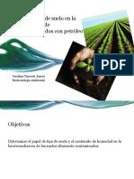 El efecto del tipo de suelo en la.pptx