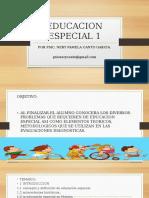 Educacion Especial 1