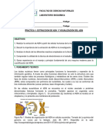 2014-2 P1 Extracción de ADN