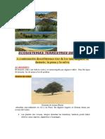 Ecosistemas Terrestres Del Perú