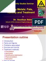 Heavy Metals GSS Seminar Jan15 13 Final