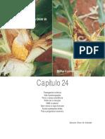 Cap. 24.pdf