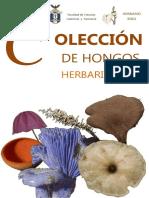 Anexo digital 4. Colección de Hongos Herbario BIGU.pdf