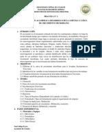 Biotecnologia Industrial Practica N2