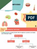 12.Sistema Nervoso