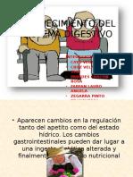 Digestivo y Renal Geronto