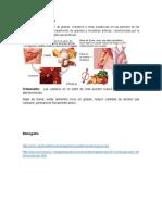 Portafolio Medico-Quirúrgico