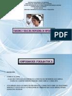 FUNCIONES Y ROLES (1).pdf