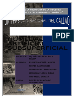HUMEDAL-ARTIFICIAL-SUBSUPERFICIAL-1.docx