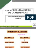 unionescelularesymicrovellosidades-091119064237-phpapp02