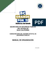 Manual Organizacion SSP