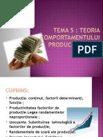 Tema 5 Teoria Comportamentul Producatorului