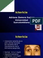 Ictericia [Autoguardado]
