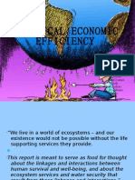Ecological Economic Efficiency in India
