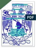 4.HISTORIA DEL DERECHO MEXICANO Equipo 4 Instituciones Juridicas Prehispanicas