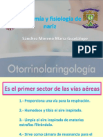 Anatomía y fisiología de nariz.pdf
