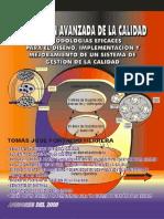 La Gestión Avanzada de La Calidad Tomás José Fontalvo Herrera (2)