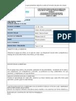 Formato Diario de Campo 17