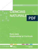 GUIA-CCNN