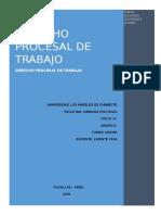 COMENTARIO DE LOS PRINCIPIOS DE LA 29497.docx