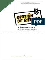 Gestion Del Riesgo Sena 2010