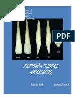Pp t Anatomia Dientes Anterior Es