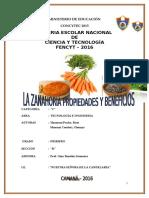 Proyecto Feria de Ciencia La Zanahoria